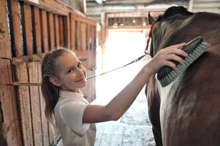 A teenage girl rider washes and brushes a horse in stable. Take care of the horses.