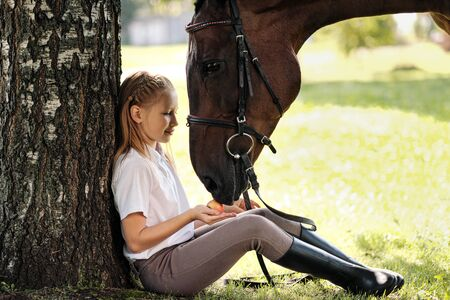 Girl teenager jockey sits in a green clearing under a tree. Feeds a horse an apple and strokes it. Love for horses.
