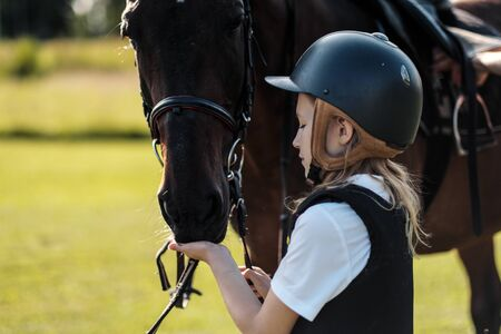 Girl teenager jockey sits on a brown horse in nature. Dressage horses, rider training.