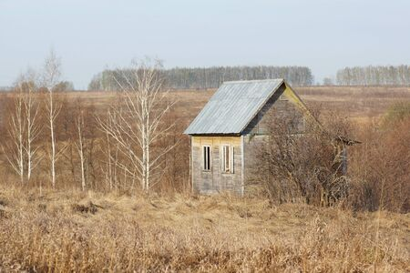 abandoned farmhouse abandoned farmhouse: abandoned farmhouse in a field on a background of forest                                Stock Photo