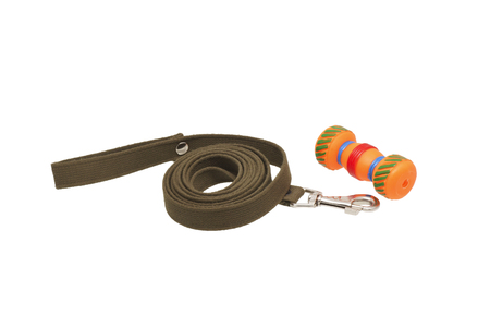 round collar: Dog leash and toys. Isolated on white.