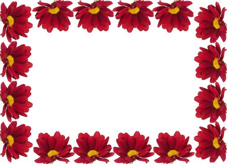 Frame for text with red chrysanthemum on the edge. Isolated on white.