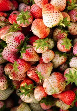 sh: sh strawberries Stock Photo