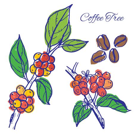 Coffee beans on trees Illustration