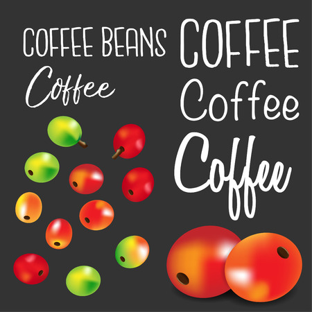 Coffee beans.Vector illustration 矢量图像