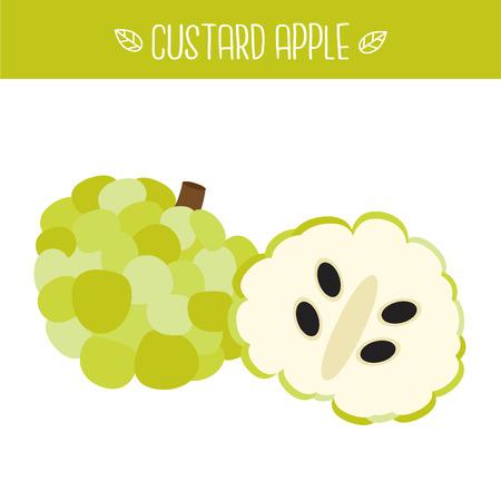 Custard apple Vector illustration.