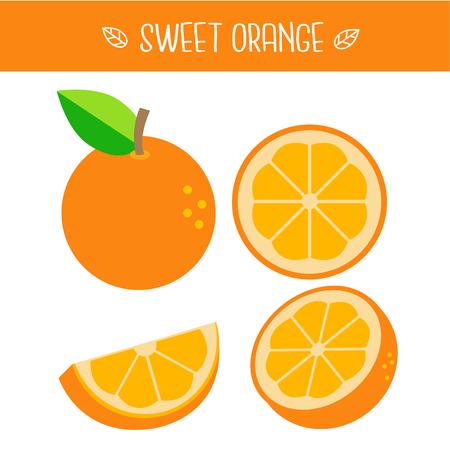 Sweet orange Vector illustration.