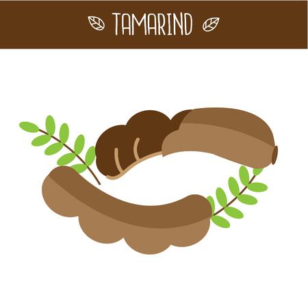 Illustration vectorielle de Tamarin