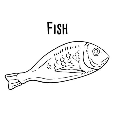 Hand drawn illustration of Fish.