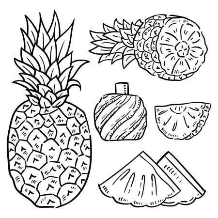 Ilustración de dibujado a mano de piña. Ilustración de vector