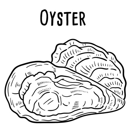 Hand drawn illustration of Oyster.  イラスト・ベクター素材