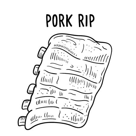 Hand drawn illustration of Pork rip.
