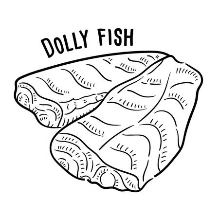 Hand drawn illustration of Dolly Fish.