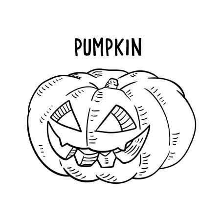 Hand drawn illustration of Halloween Pumpkin. Illustration