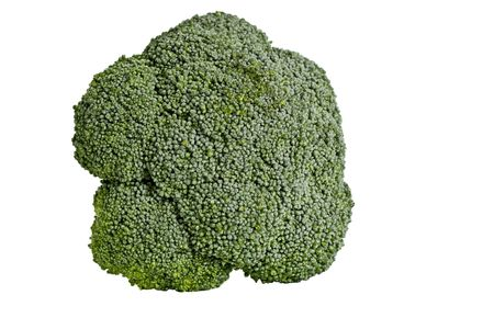 brocolli: Isolated brocolli