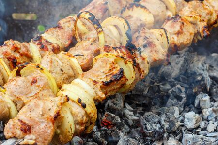 Tasty juicy meat cooked on skewers on a fire
