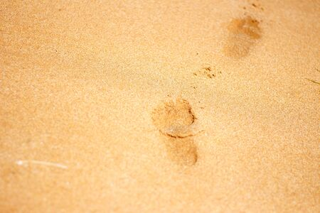 Footprints from childrens feet in the clear sea sand