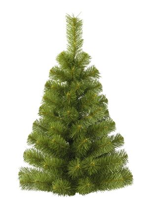 Christmas fur-tree on white Stock Photo - 5339427