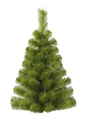 Christmas fur-tree on white Stock Photo - 5339427