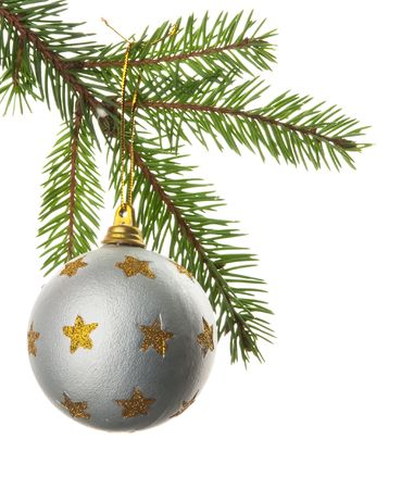 Christmas toy on a branch of a fur-tree Stock Photo - 5849659