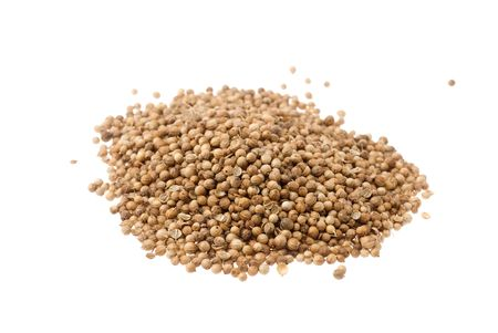 Heap of coriander seeds isolated on white