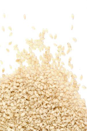 sezam: Nasiona sezamu samodzielnie na biaÅ'ym tle Zdjęcie Seryjne