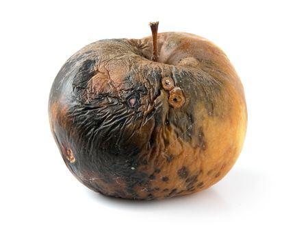abominable: rotten apple isolated on a white background