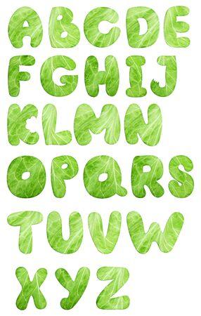 lettuce salad alphabet Stock Photo - 6972098