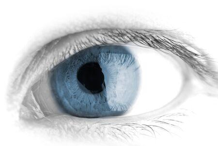 人間の目。マクロ