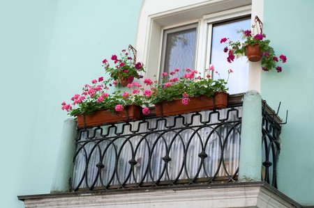 old balcony with flowers. Sankt-Peterburg photo