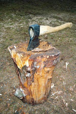 Axe splitting wood block Stock Photo - 4450281