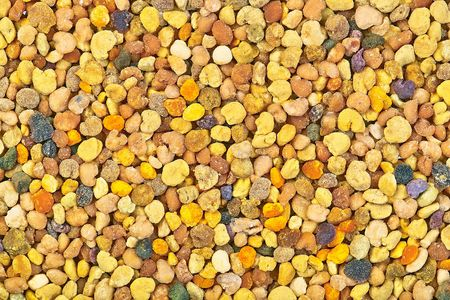 Multicolored natural honeybee pollen close-up image