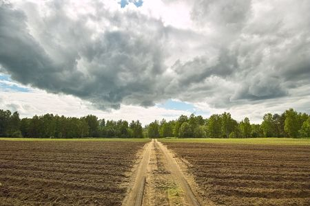 Country road. Dirt road through the ploughed field