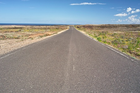 Asphalt road through the wilderness to ocean Stock Photo - 9688225