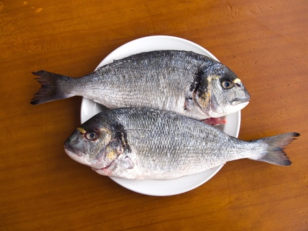 gilthead bream: Two scaled gilt-head bream fishes on the white plate, ready for cooking Stock Photo
