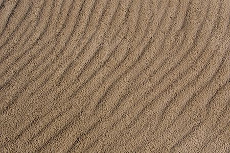 wind blown: wind blown beach sand texture after the rain
