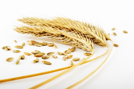grain and wheat ears on white Stock Photo - 1490229