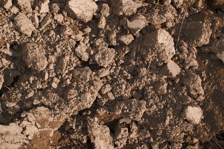 plowed: freshly plowed  brown soil backgrownd