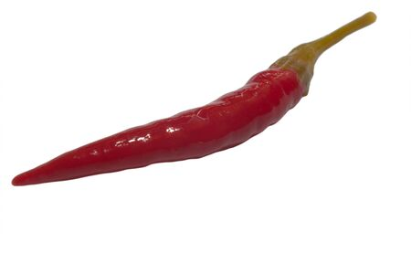 pungent: red hote pickled chili pepper isolated on white Stock Photo