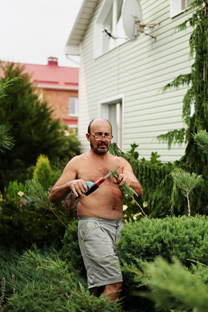 clippers: Man gardener (60 years old) with clippers in hand making art cutting juniper. Selective focus. Stock Photo