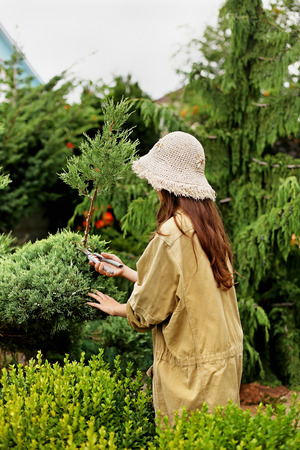 Girl gardener in working clothes and straw hat cuts garden scissors evergreen. Her face is hidden.