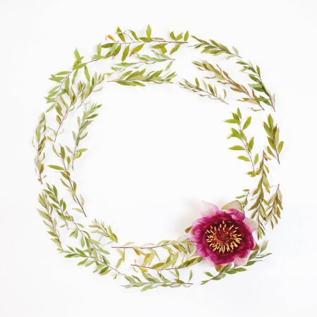 Floral round frame on white background. Flat lay, top view. Ornament with gray grefsheim (spiraea cinerea) leaves and nymphaea waterlily purple flower with space for text.