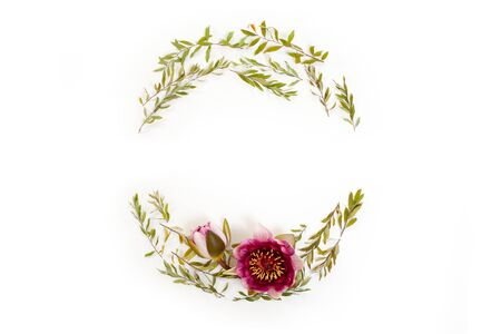 Floral round frame on white background. Flat lay, top view. Wreath with gray grefsheim (spiraea cinerea) leaves and nymphaea waterlily purple flower with space for text. Stock Photo