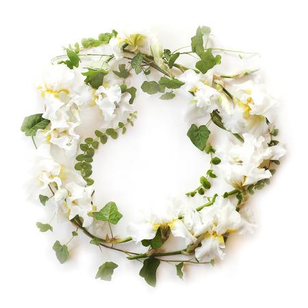 Round floral frame made of fresh iris white flowers and ivy hedera round floral frame made of fresh iris white flowers and ivy hedera branches on mightylinksfo
