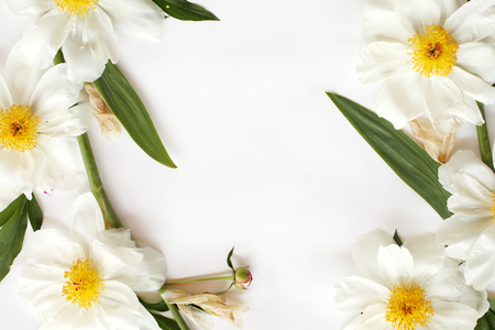 Frame of white peonies, leaves of iris isolated on white background. Flat lay, top view.