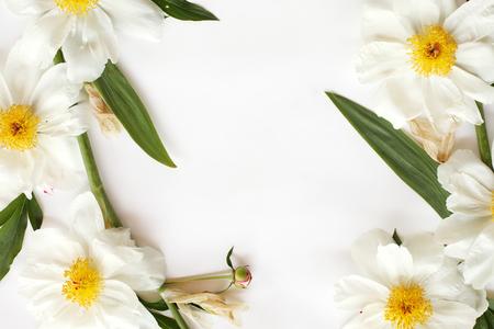 Marco de peonías blancas, hojas de iris aisladas sobre fondo blanco. Plana, vista superior. Foto de archivo - 85634716
