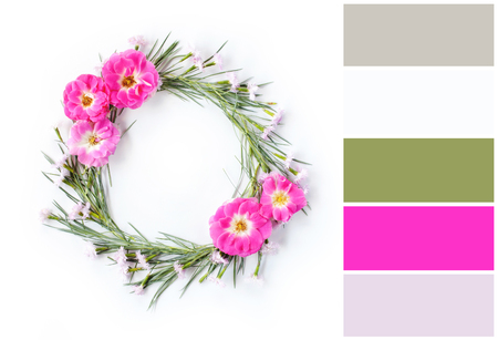 flowers composition color palette scheme with complementary swatches Stock Photo