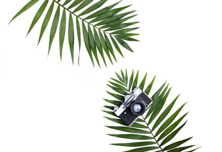 Palm leaves and old photo camera isolated on white background. Flat lay travel concept.