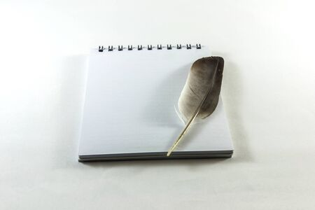 waft: feather  note Stock Photo