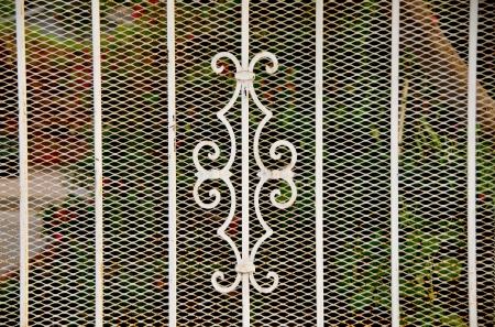 Gate Door Fence photo